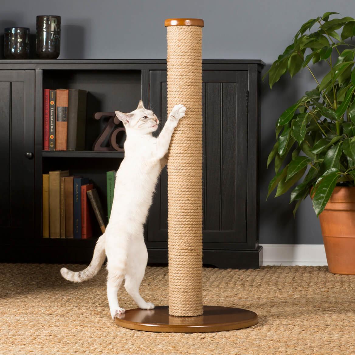 Когтеточка напольная для кошек своими руками Дом из профилированного бруса своими руками: пошаговая