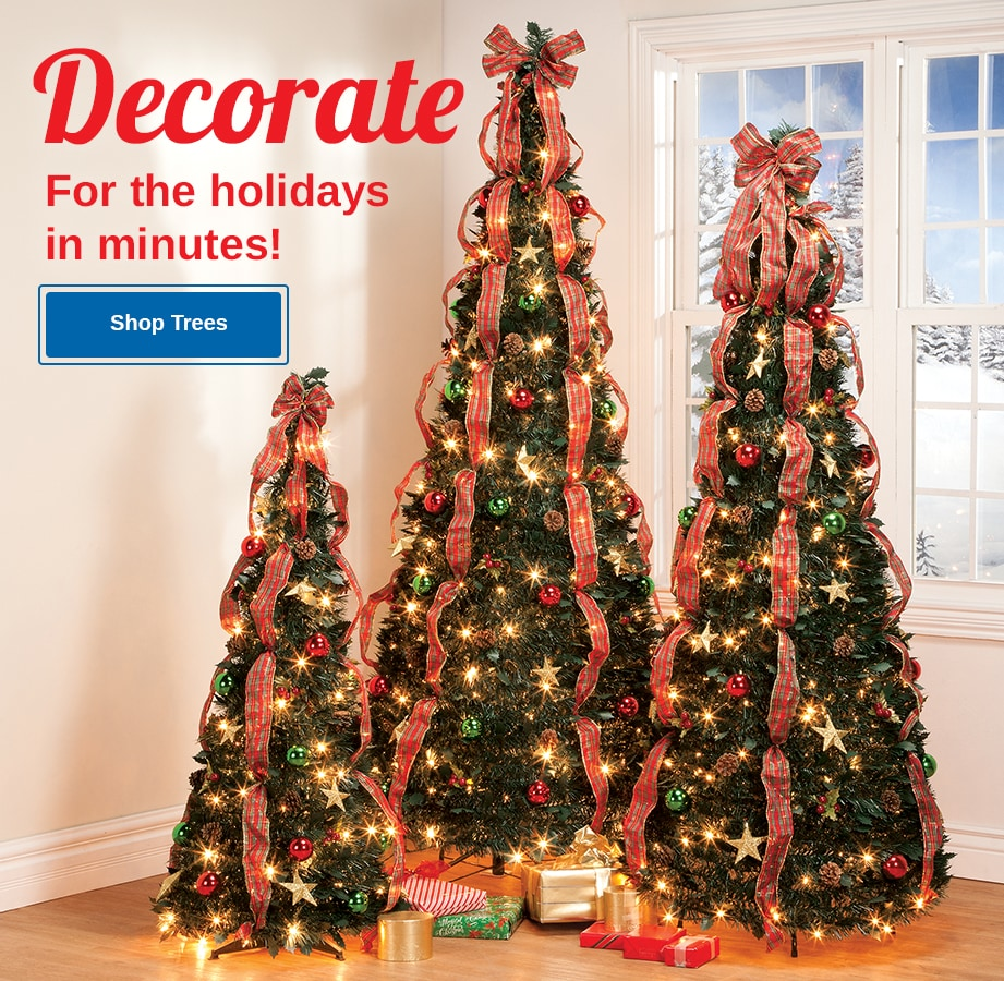 Abc Christmas Catalog 2019.Miles Kimball Kitchen Home Garden Online Store