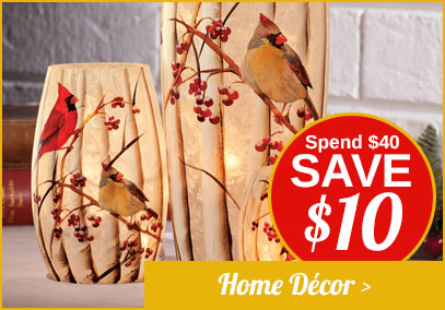 Seasonal Décor - Spend $40 Save $10