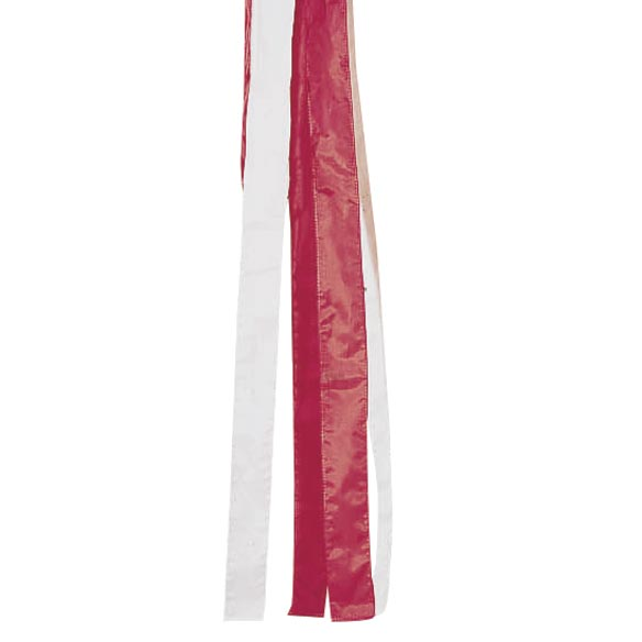 Patriotic Windsock-310230