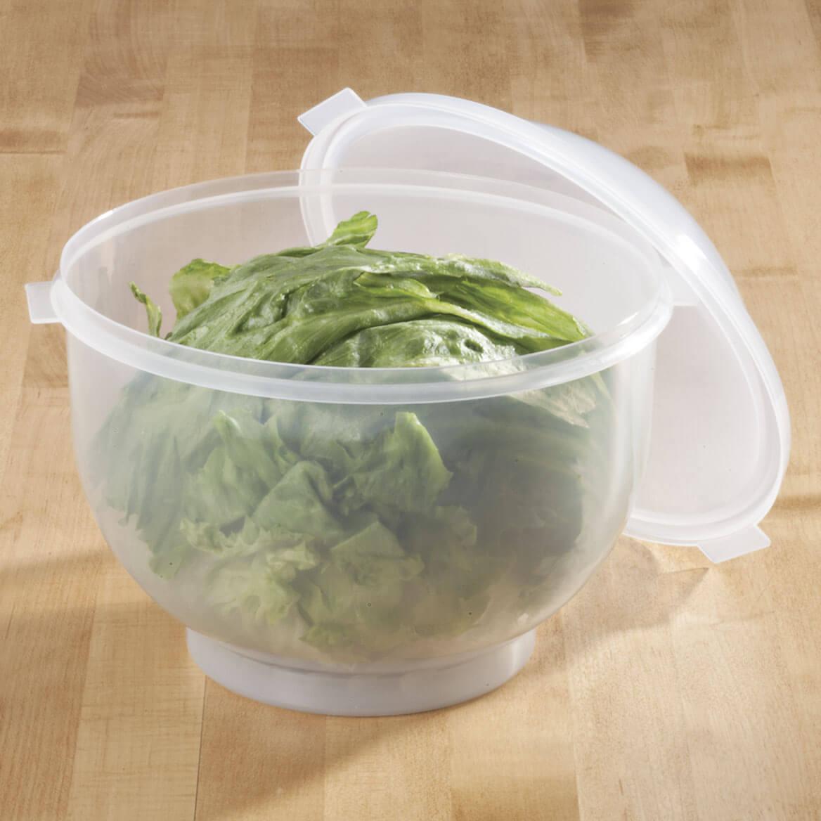 Lettuce Keeper-312258