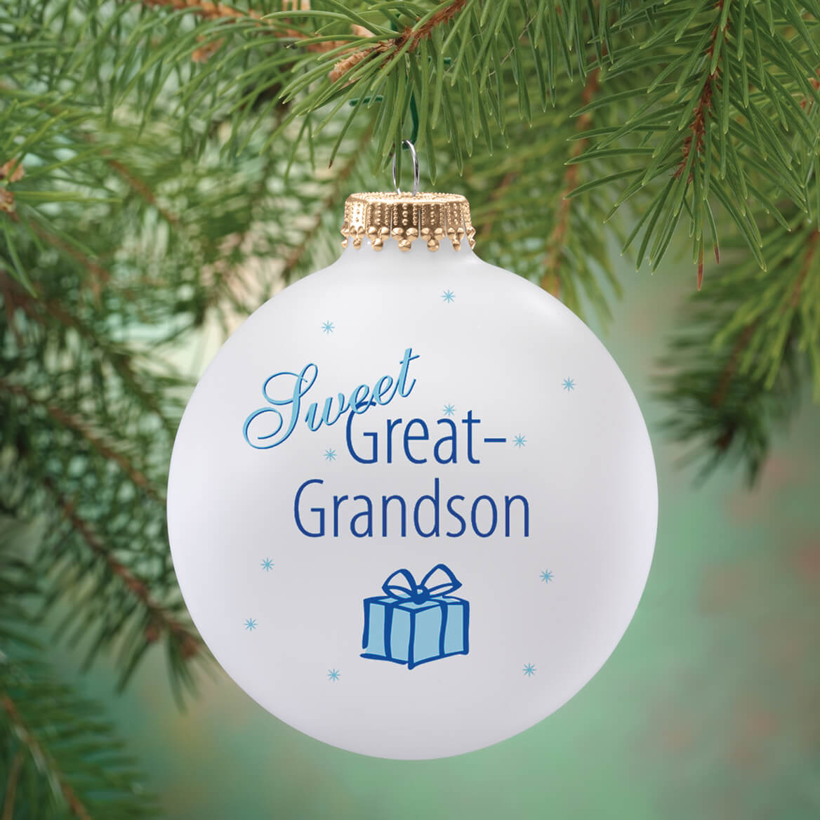 ... Personalized Sweet Great Grandson Ball Ornament-343091