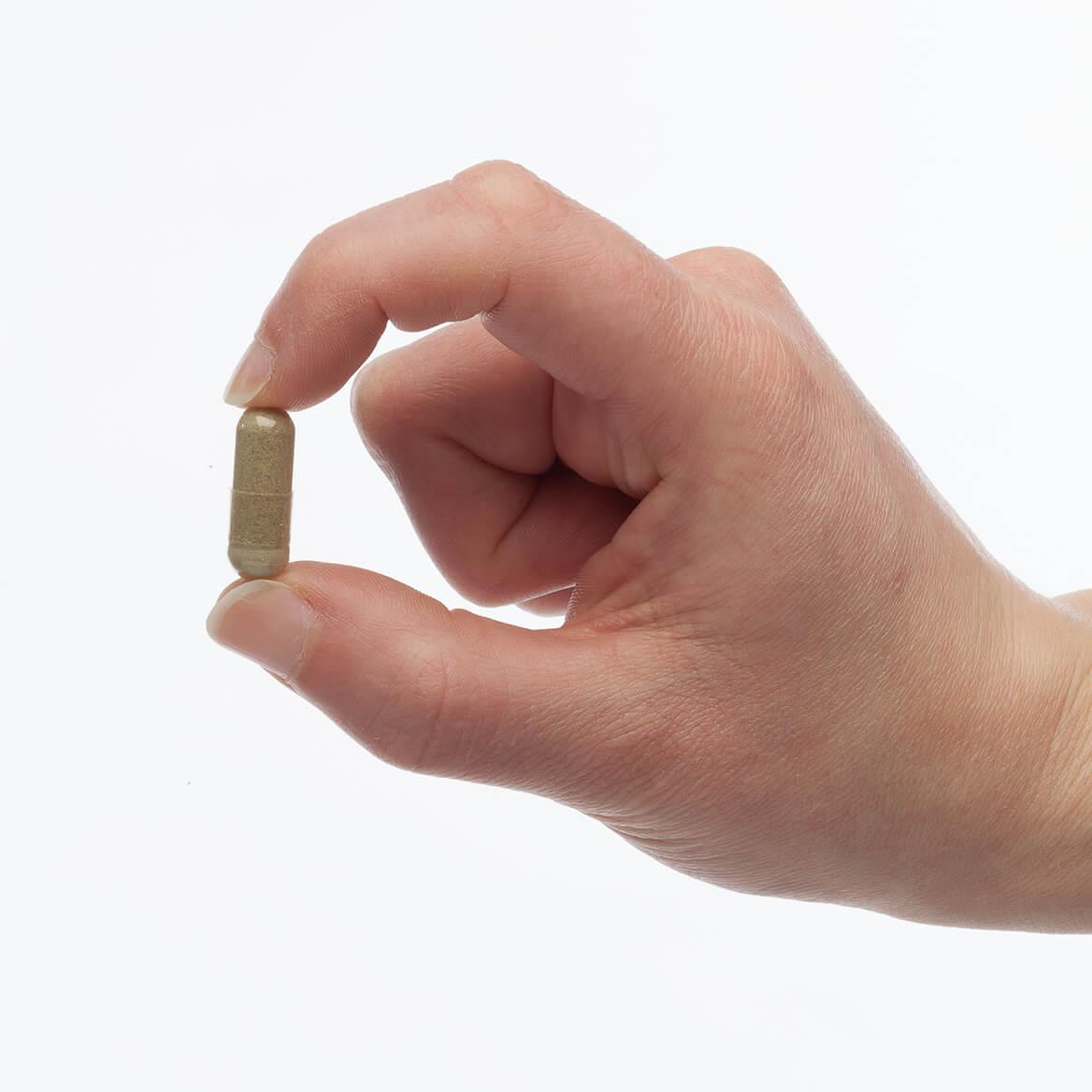 PetAlive® Gumz-n-Teeth™-351913