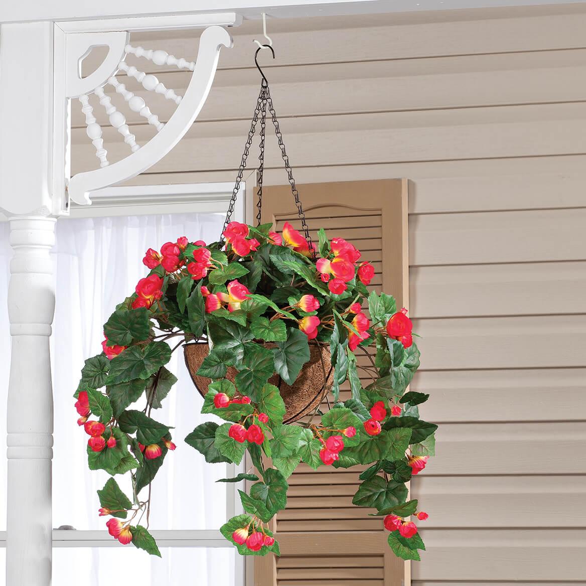 Fully Assembled Begonia Hanging Basket by OakRidge™-355016