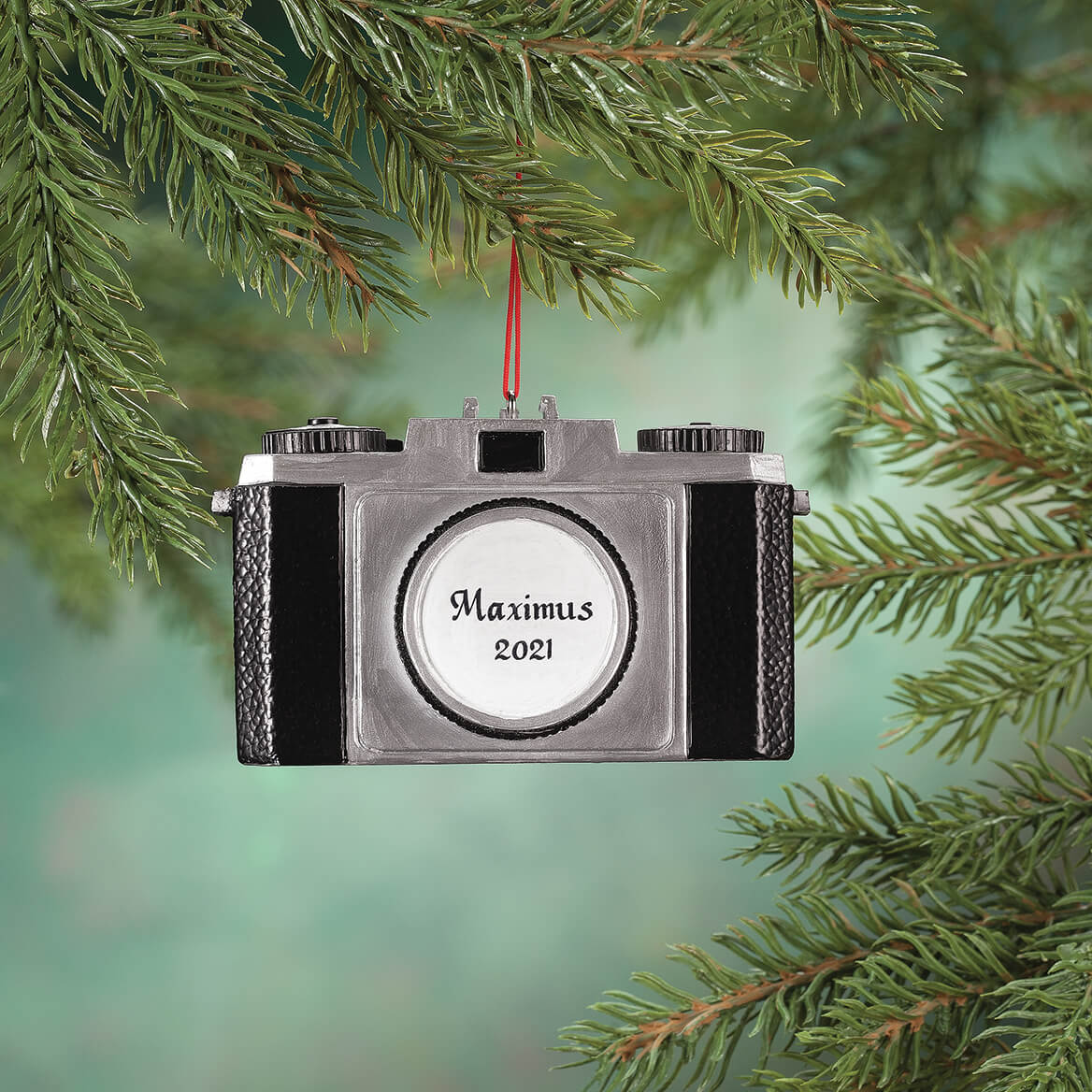 Personalized Camera Ornament-356442