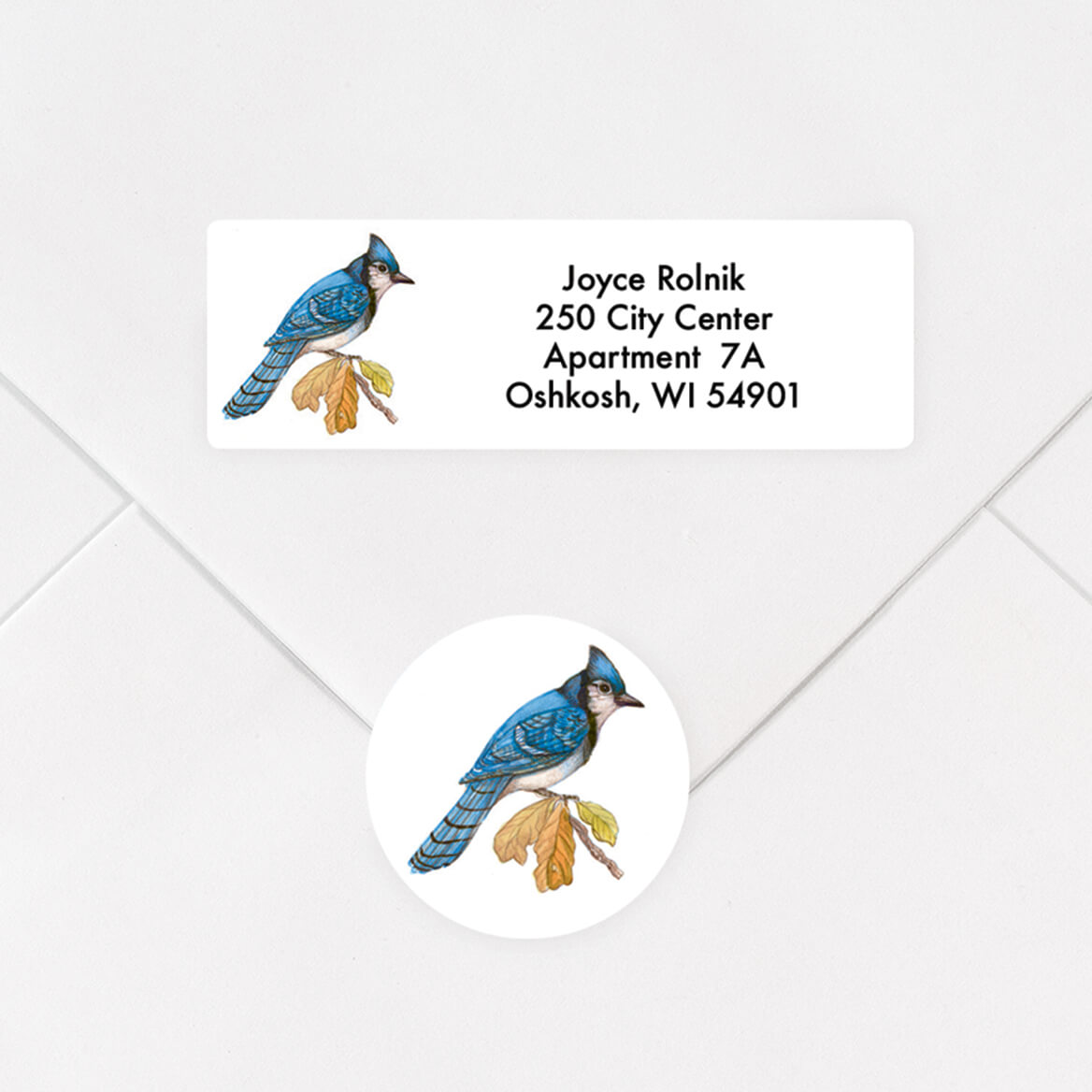 Personalized Wild Birds Address Labels and Seals Set-357546