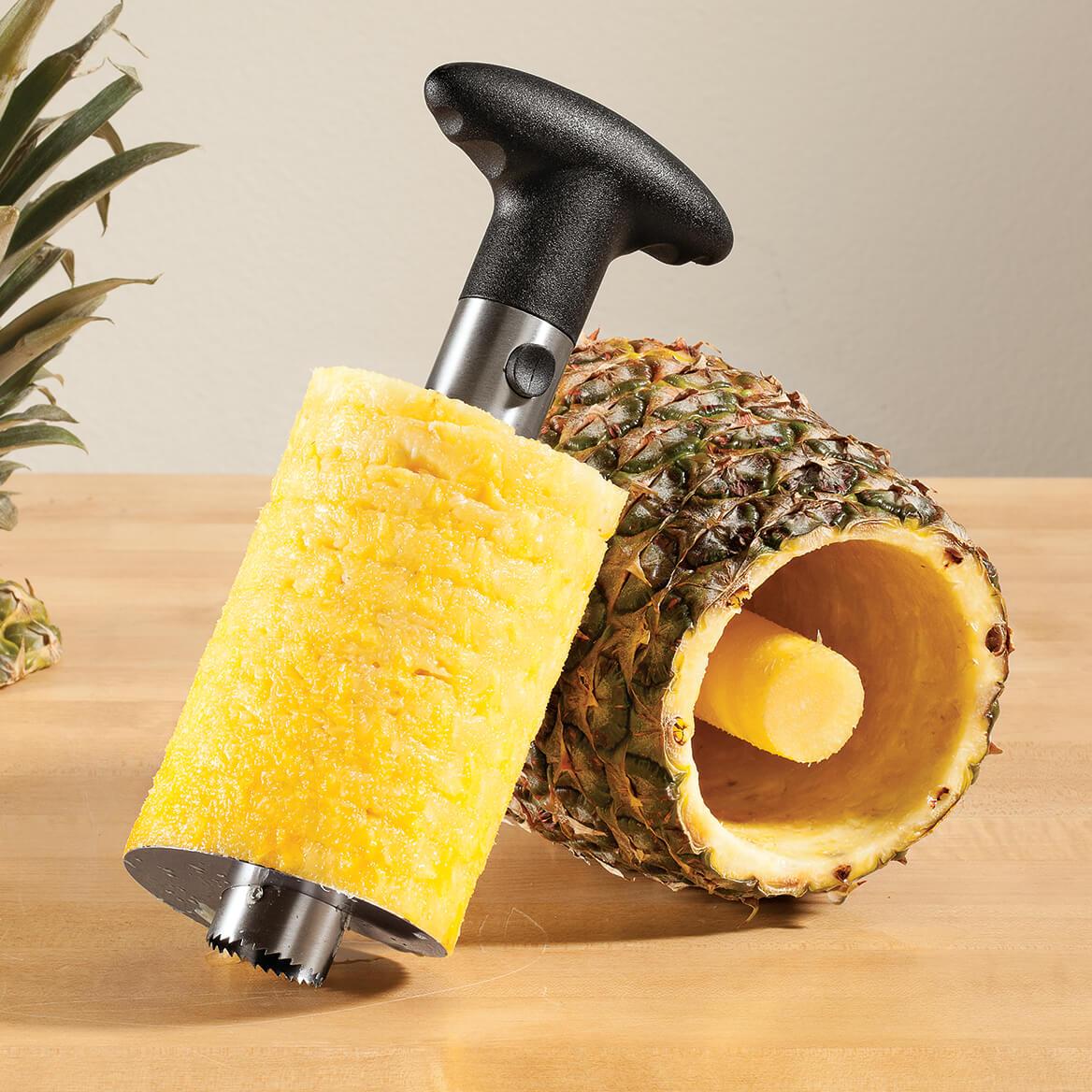 Pineapple Slicer and Corer-362841