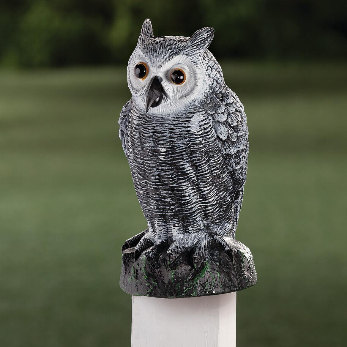 Sensor Owl-366326