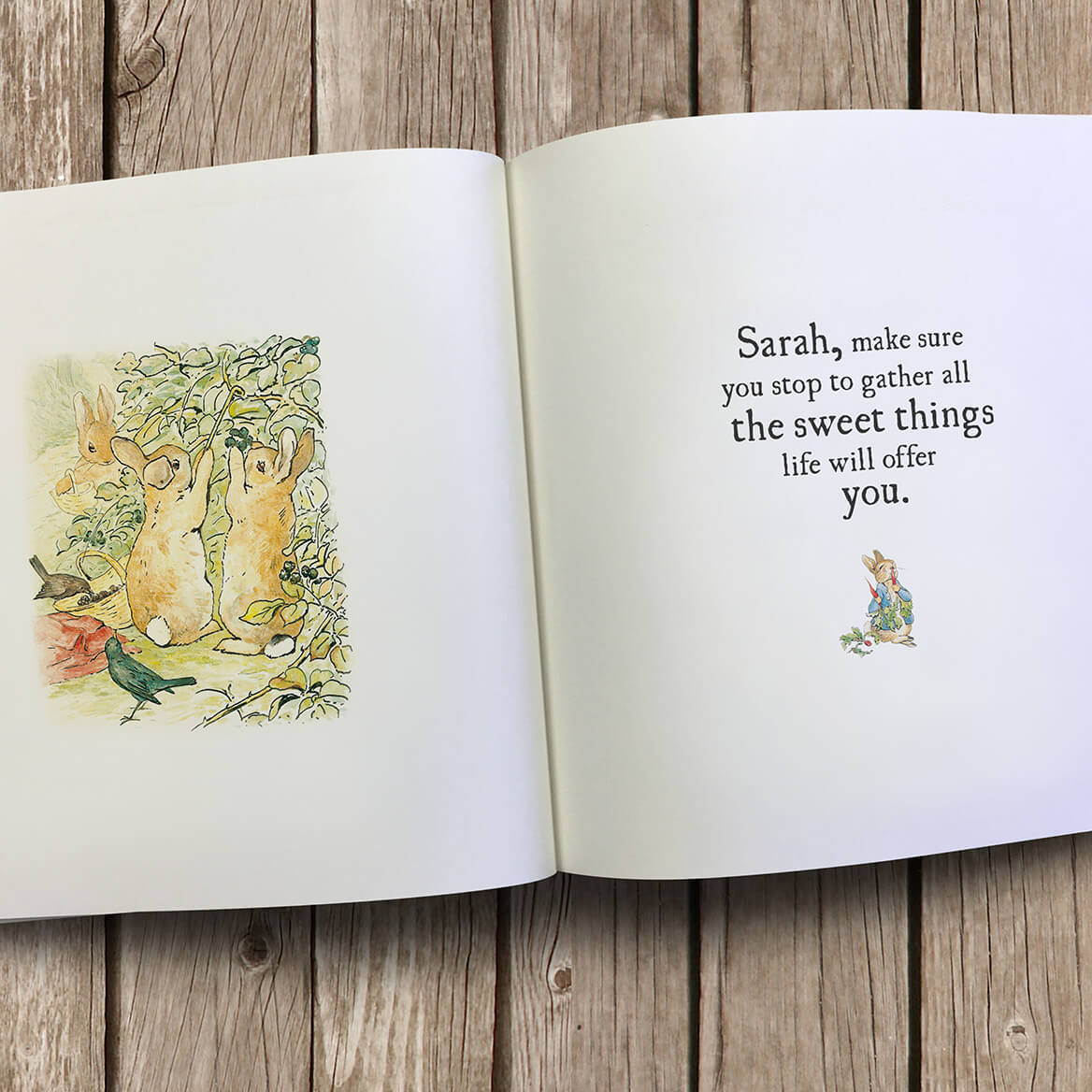 Personalized The Peter Rabbit Hopping into Life-369421