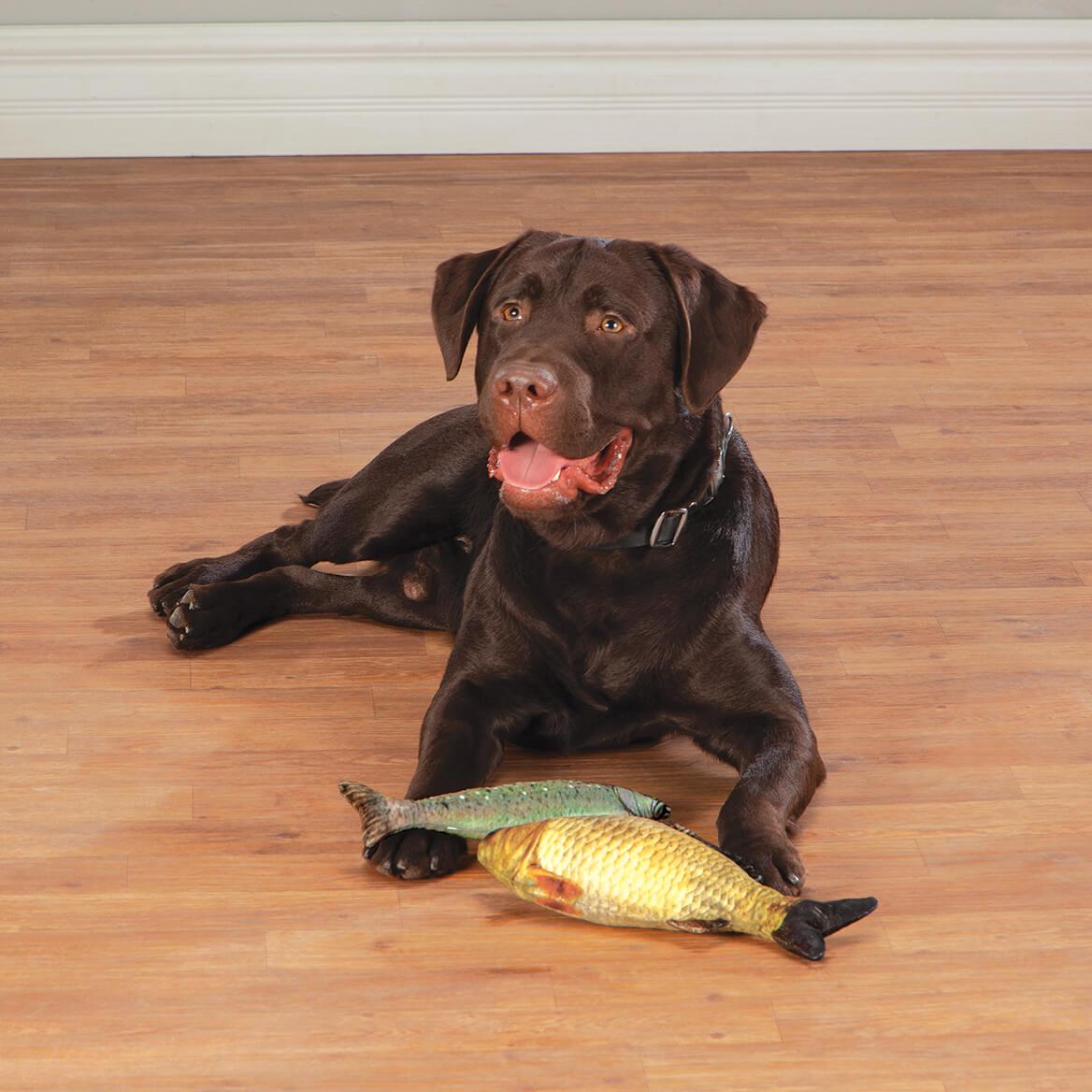 Plush Fish Dog Toys, Set of 2-371195