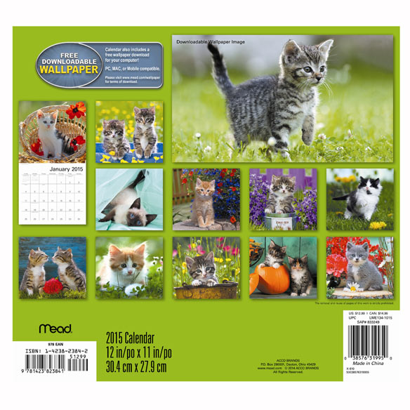 Kitten Wall Calendar - View 2