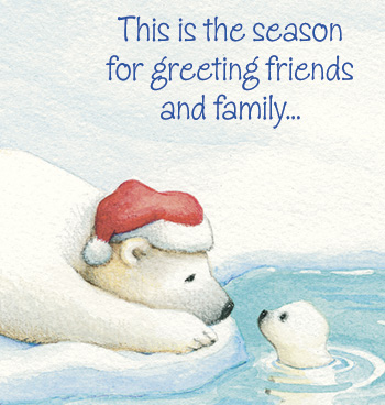 Arctic Friends Christmas Card Set of 20 - View 4