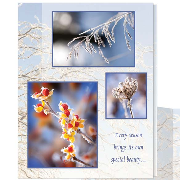 Nature Christmas Cards - Set of 20 - View 2