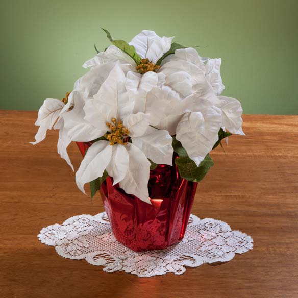 "Christmas Poinsettia 12"" - View 3"