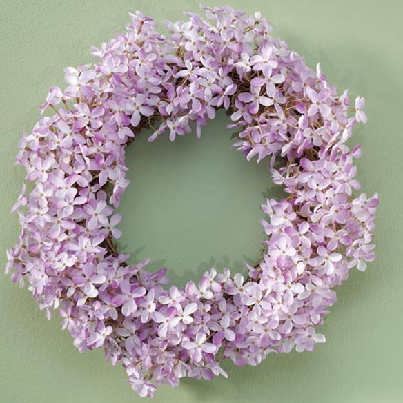 Lilac Stem and Wreath