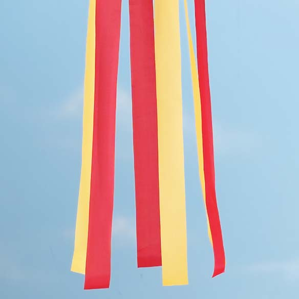 Tulip Windsock - View 3