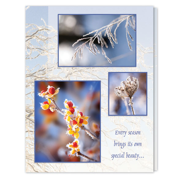 Season's Beauty Unpersonalized Card Set of 20 - View 2