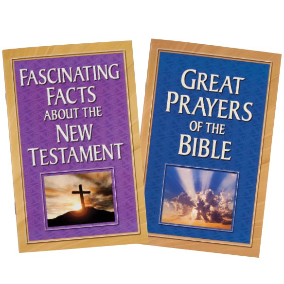 Bible Books, Set of 8 - View 5