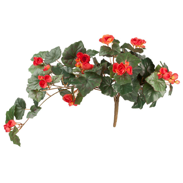 Silk Begonia Hanging Bush - View 5