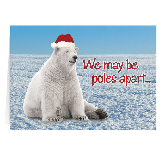 Polar Bear Christmas Card Set of 20 - View 2