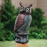 Birdfeeders & Pest Control - Motion Sensor Owl