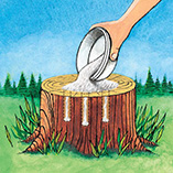 Lawn & Exterior Maintenance - Tree Stump Remover