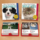 Table Calendars - Dog Or Cat Page A Day Calendar