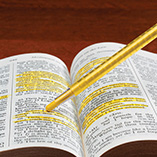 View All Books & Reading - Bible Dry Liter