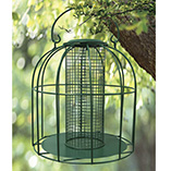Birdfeeders & Pest Control - Bird Feeder For Small Birds