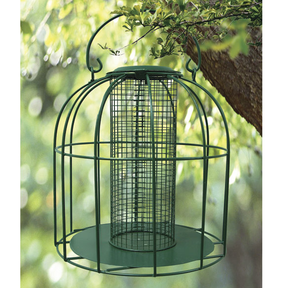 Bird Feeders For Small Birds