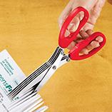 Desk & Computer Accessories - Shredding Scissors