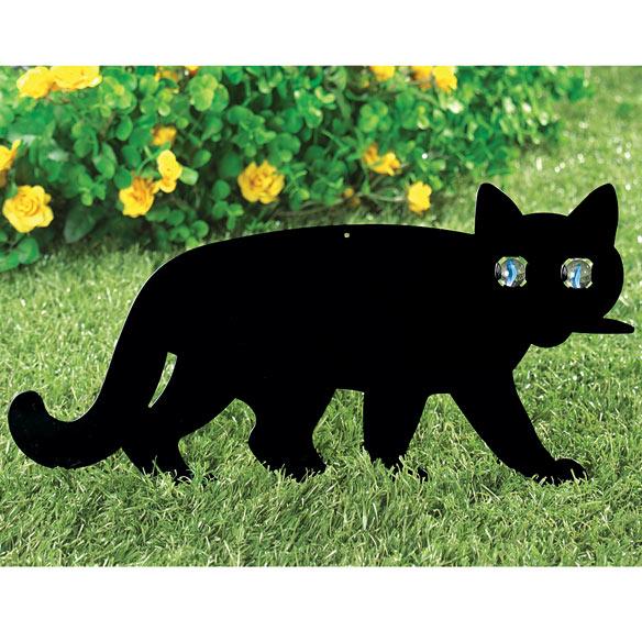 Garden Black Cat