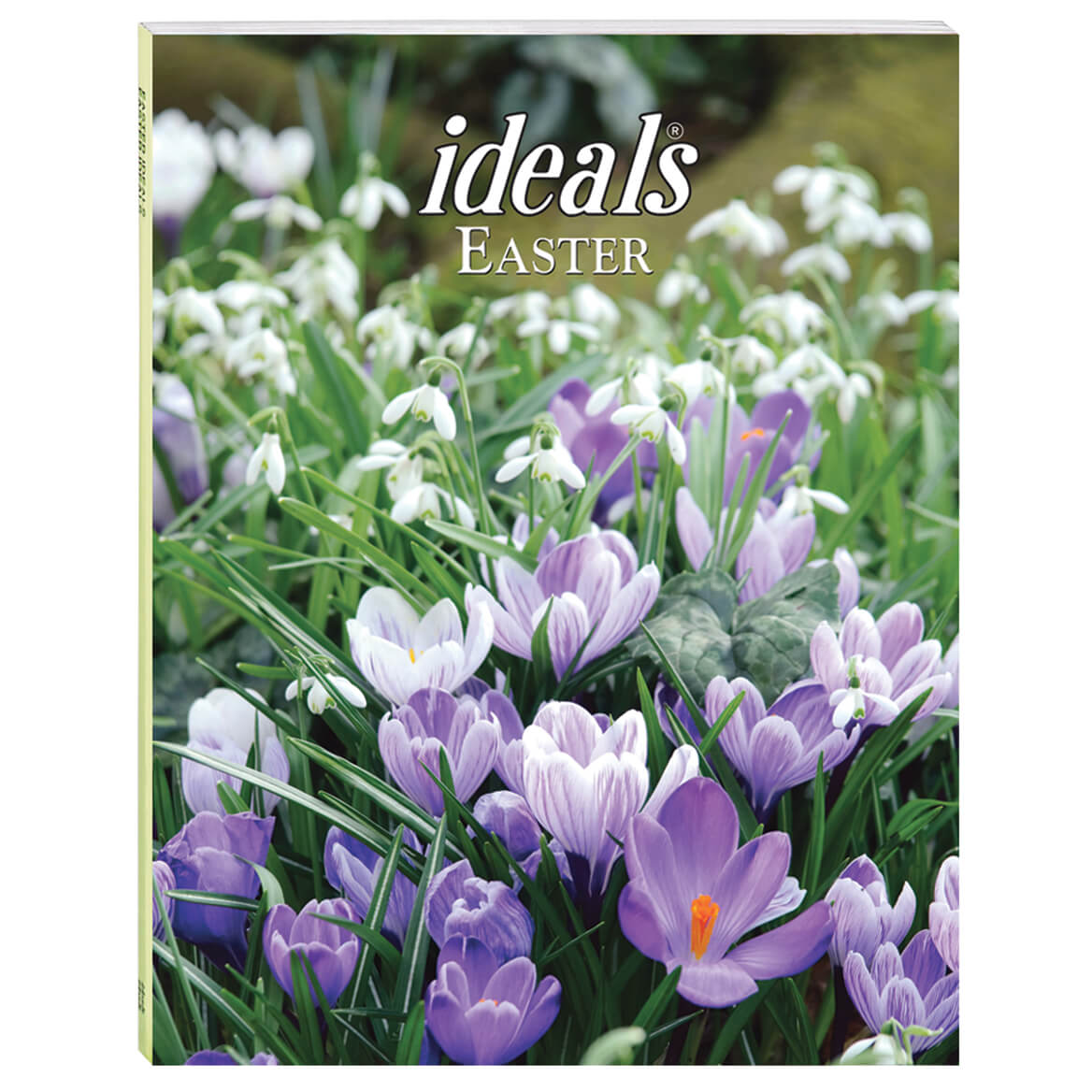 Easter Ideals 2021-328667