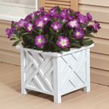 Top Items - Chippendale Planter