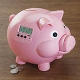 Pig E Bank