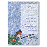 Nature Inspired - Winter Songbird Christmas Card Set/20