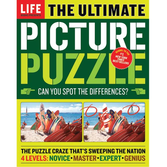 The Ultimate Picture Puzzle