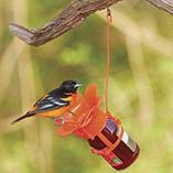 Birdfeeders & Pest Control - Jelly Jam Feeder™