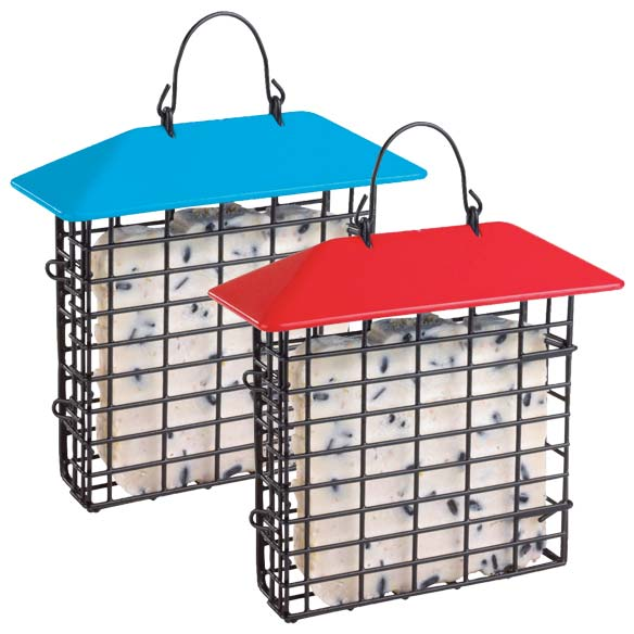 Weather Guard Suet Feeder