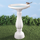 Birdfeeders & Pest Control - Bird Bath