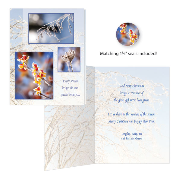 Nature Christmas Cards - Set of 20