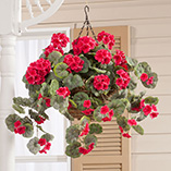 View All Flags, Spinners & Outdoor Decor - Artificial Geranium Hanging Bush