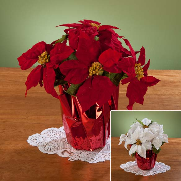 Christmas Poinsettia 12""