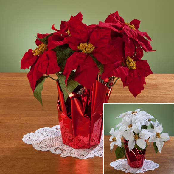 Christmas Poinsettia 15""