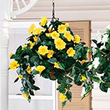 Petunia Artificial Flower Baskets