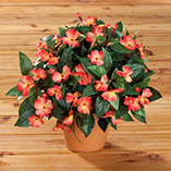 View All Flags, Spinners & Outdoor Decor - Artificial Impatiens Potted Bush
