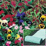 Plants, Seeds & Garden Rolls - Shady Garden Roll Out Flowers