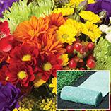 Plants, Seeds & Garden Rolls - Summer Garden Roll Out Flowers