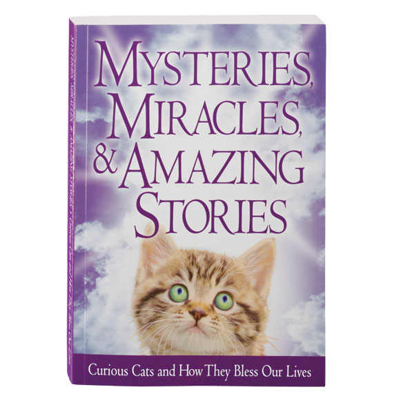 Mysteries, Miracles, & Amazing Stories Cat