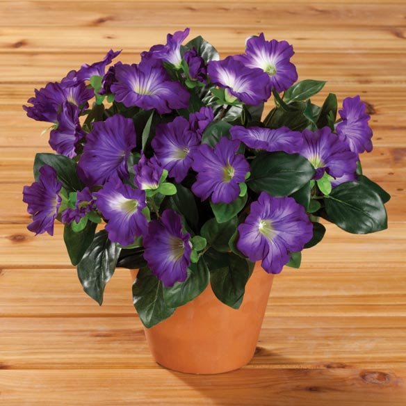 Artificial Petunia Potted Bush - View 1